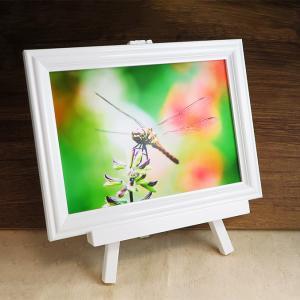 陶板写真で思い出を残しませんか?半永久的に色褪せない陶板写真を作成します。