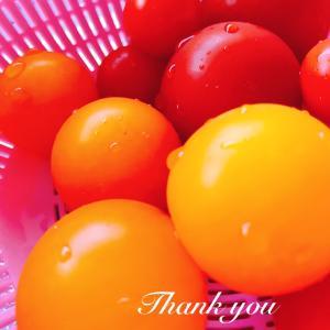 【つぶやき】 ~秋ですが✽あっという間に過ぎた夏✽美味しい恵み♡~