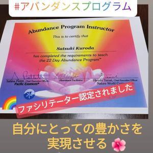 アバンダンスプログラム
