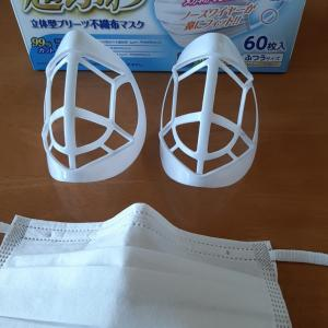 どうしてみんなマスクホルダーを使わないの?