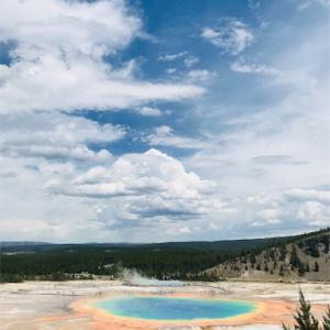 【アメリカキャンプ】イエローストーン国立公園のキャンプ&観光のコツ!