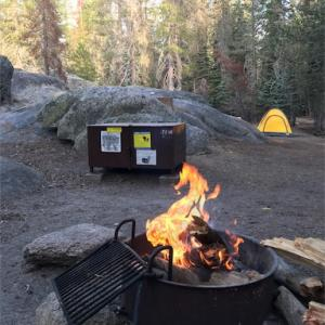 【アメリカキャンプ】ヨセミテ国立公園でのキャンプ&観光を徹底解説