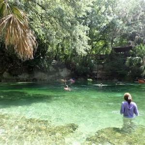 【アメリカキャンプ】透き通る泉ブルースプリング州立公園で泳ごう!キャンプもしてきました
