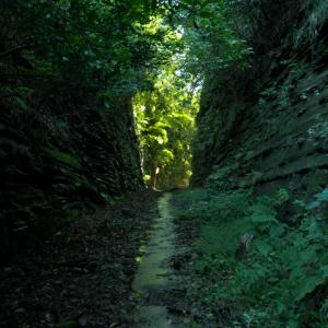 沼津 狩野川放水路の採石場跡と口野の切通し