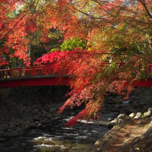 修善寺ぷらぷら (桂川付近の観光スポット)
