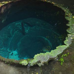 柿田川湧水群より川は生まれる