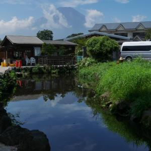 忍野八海3 観光客の国籍比率が知りたいw(湧池、濁池、鏡池)