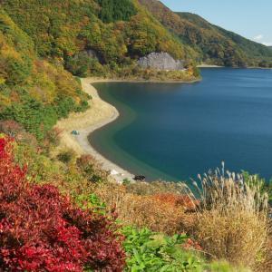 富士山が育んだ 富士五湖2(西湖、精進湖、本栖湖)
