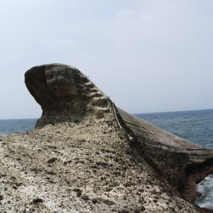 西伊豆 安城岬 ふれあい公園と亀甲岩
