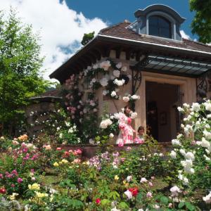 薔薇咲く、河口湖 オルゴールの森 美術館に行ってきました