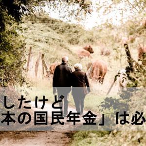 移住したけど「日本の国民年金」は必要?