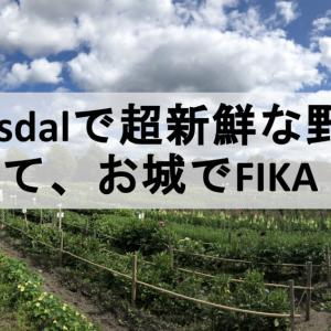 Ulriksdalで超新鮮な野菜、そしてお城でFIKA