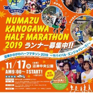 17日(日)に狩野川周辺で沼津かのがわハーフマラソン2019が開催されます