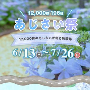 三島スカイウォーク 県民は入場料 半額、無料 13日(土)よりあじさい祭りを開催中