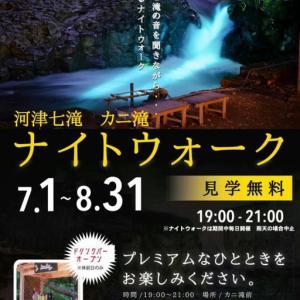 1日(木)より河津七滝でカニ滝ナイトウォーク、風涼渓開催中
