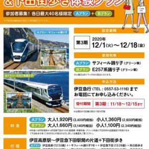 1日(火)から下田と伊豆急で伊豆新特急&下田街歩き体験プランが始まります
