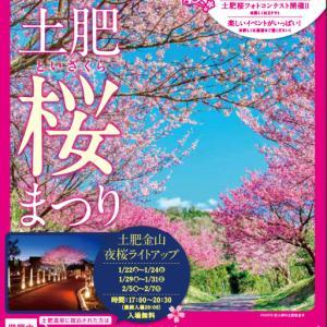 20日(水)から松原公園で土肥桜まつりは規模を縮小して開催