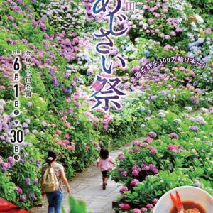 1日(月)からの下田公園のあじさい祭は中止 新型コロナウイルス感染拡大
