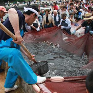 5日(日)松崎 石部海水浴場で開催予定の石部温泉大地曳き網まつりは中止 新型コロナウイルス災禍