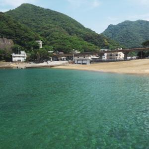 11日(日)に松崎町 雲見温泉でサザエ無料プレゼント