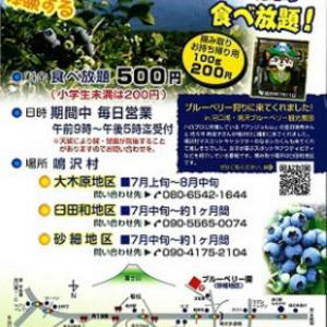 18日(土)19日(日) 道の駅なるさわ ブルーベリー祭り なるさわ収穫祭は中止