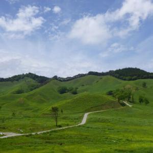 「日本じゃないみたい」銀色に輝くススキの草原 映画ロケ地にもなった砥峰高原