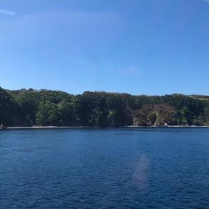 伊豆大島の大自然で子供はのびのび。ママは温泉三昧で幸せ旅