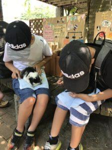 北九州市立総合農事センターで可愛い動物とふれ合える!嬉しいひと時♪