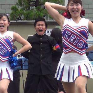 アンスコ、ドアップ!慶應義塾大学チアリーダー@早慶応援合戦2015