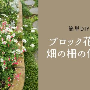 簡単DIY|ブロック花壇と畑の柵の作り方