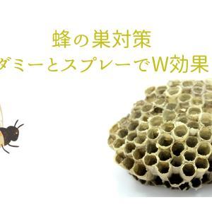 蜂の巣を作らせないための対策は?ダミーとスプレーでW効果