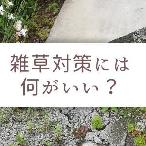 雑草対策には何がいい?コンクリート、砂利、固める砂、グラウンドカバーと試して分かったこと