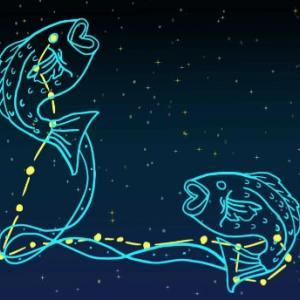 魚座新月は、浄化!浄化!浄化