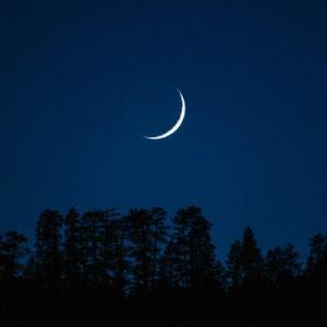 あなたの生まれた時の月の形は何ですか?