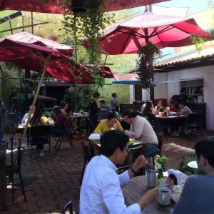 ゆったり朝食、メキシコレオンのお洒落カフェ-Las Moras