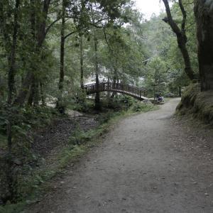 自然と歴史の町ポンテベドラ観光-スペイン ポンテベドラ旅行記(2011/08)