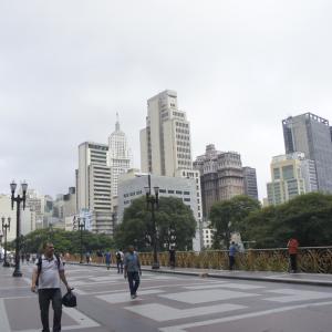 ブラジルで日本を発見!日本と深い関わりのあるサンパウロを観光-ブラジル サンパウロ旅行記(2012/03)