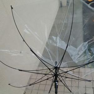 耐風ビニール傘は本当に折れにくいのか