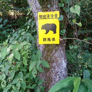 ツーリングでGO!⑦ クマ出没注意の岩櫃城に登ると...ん?