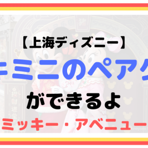 【上海ディズニー】ミキミニのペアグリーティングができるよ(ミッキー・アベニュー)