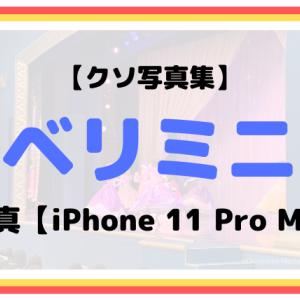 【クソ写真集】イッツ・ベリー・ミニー!の写真【iPhone 11 Pro Max】