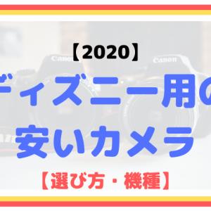 【2020】ディズニー用の安いカメラまとめ(一眼レフ・ミラーレス)