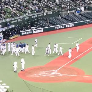 ガンバレ埼玉西武ライオンズ!