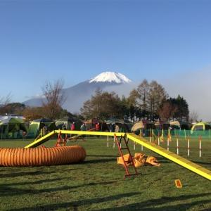 富士山が見える競技会