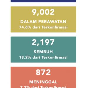 5月5日(火)の集計 インドネシア政府発表より