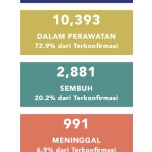 5月11日(月)の集計 インドネシア政府発表より