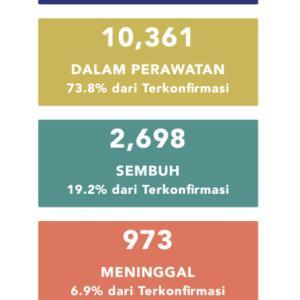 5月10日(日)の集計 インドネシア政府発表より