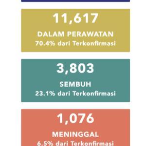 5月15日(金)の集計 インドネシア政府発表より