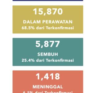 5月26日(火)の集計 インドネシア政府発表より