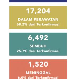 5月29日(金)の集計 インドネシア政府発表より
